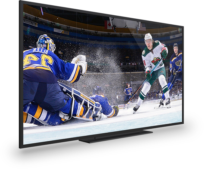 hockey being played on a tv