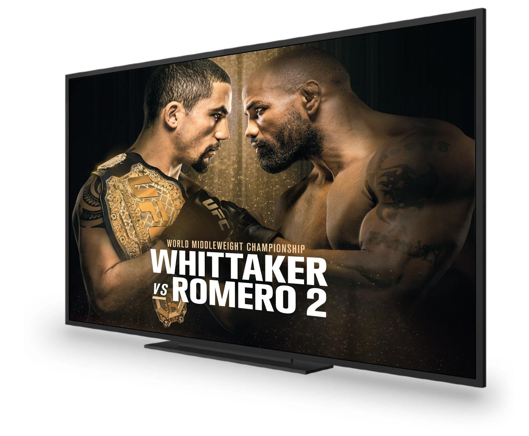 2018-06-04-SD-UFC225-E-Spot_Footer-En-1736x1432