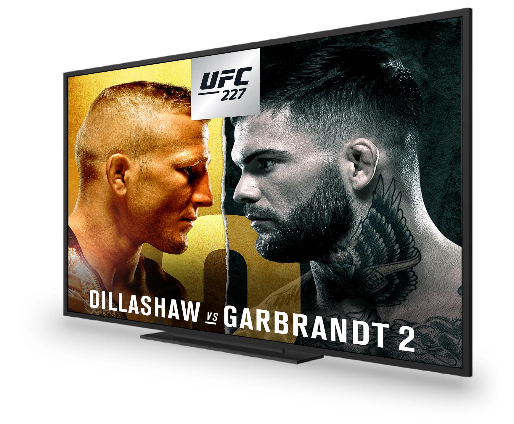 SD-UFC227-E-Spot_Footer-En-1736x1432